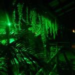 Jardim - vista noturna
