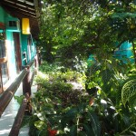 Nosso verde