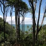Trilhas e praias